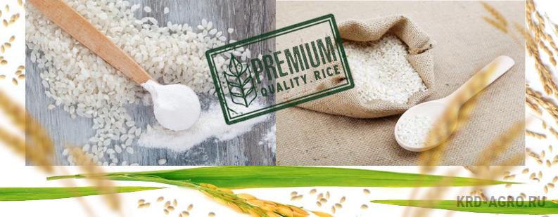 Дробленный рис по ГОСТ оптом